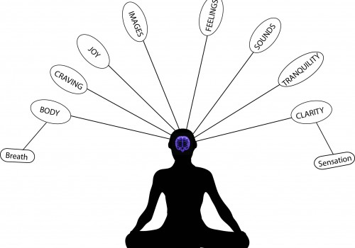 Mapping the Meditative Mind
