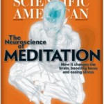 The Mind Of The Meditator